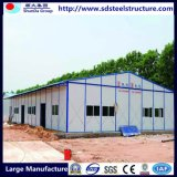 Hogares modulares de las aves de corral ligeras de la estructura de acero para la venta