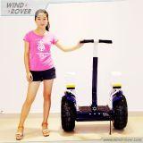 hors de Road Electric Car Self Balancing Vehicle Pedals Scooter
