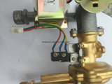 E 로고 (JZE-196)를 가진 즉시 가스 온수기
