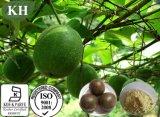 Выдержка 100% Luo Han Guo Kingherbs: 80% Mogrosides, 25% Mogroside v