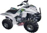 150cc QUAD/ATV con CE (FST-150-C)