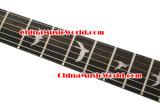 Les P.R. dénomment/guitare électrique d'Afanti (APR-057)