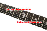 Os fotorreceptores denominam/guitarra elétrica de Afanti (APR-057)