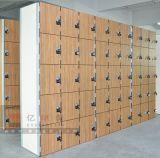 Cabina laminada compacta del armario