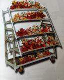 Chapado en zinc Visualización de la flor de la carretilla Malla Estante de la herramienta de la compra