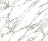 Белизна Carrara застекленного цены 600X600mm плитки пола фарфора