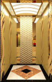Dsk Passenger Elevator with Luxury Cabin