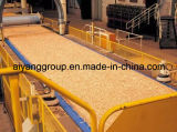 Waterproof Glueの4FT x 8FT x 6mm/11mm/18mm OSB Board/OSB