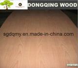 Talla estándar de la madera contrachapada barata del precio con 1220X2440m m 18m m