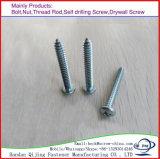 Het Roestvrij staal met hoge weerstand schroeft Zelf BoorSchroef/Houten Schroef/de Schroef van de Machine