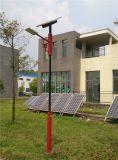 Réverbère solaire de qualité avec le panneau solaire (10W~30W)