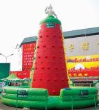 Collina rampicante gonfiabile della nuova stuoia quadrata 2017 per il carnevale
