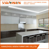 Neuer Entwurfs-modularer Wohnküche-Schrank von Hangzhou