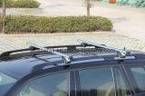Treasurall 차 부속품 알루미늄 차 루프랙