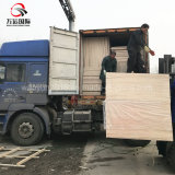 Madera contrachapada laminada Okoume comercial del álamo del bulto E2 BB/CC