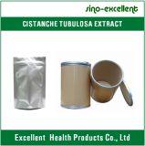 ポリフェノール、ActeosideおよびEchinacosideのCistanche Tubulosaのエキス