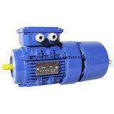 Moteur électrique triphasé 400-4-500 de frein magnétique de Hmej (AC) électro