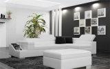 Sofa en cuir sectionnel commercial moderne plus vendu réglé (HC1070)