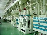 30tpd к 100tpd завершают полностью готовый завод стана риса