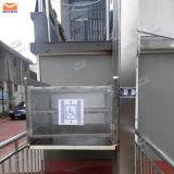plate-forme d'ascenseur de fauteuil roulant d'handicap de film publicitaire de 3m