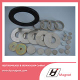Super starker kundenspezifischer Ring-permanenter Neodym-/NdFeB-Magnet des Zink-N35 in China