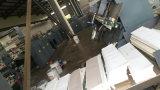 Hochgeschwindigkeitsweb Flexo Drucken und Kälte, die verbindlichen Notizbuch-Übungs-Buch-Tagebuch-Kursteilnehmer-Produktionszweig klebt