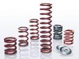 Kundenspezifisches Zink Palted Stahltorsions-Sprünge, Galvanisation-Metalltorsions-Sprünge,