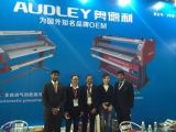 Machine de stratification froide chaude de grand format d'Audley