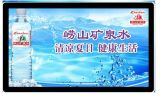 47'' Wall Mounting TFT LCD Advertising Display with Media Player
