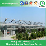 Дом верхнего листа парника фасада доски PC стеклянного зеленая на сбывании