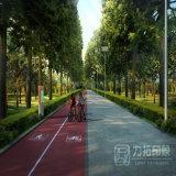 Зеленые изображения перевод Pespective дороги с совершенным процессом