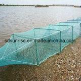 PE 어업 삼실 어망 어업 감금소