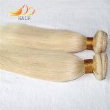 薄い色まっすぐなブロンドカラー毛を編むビルマの毛
