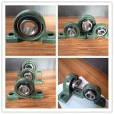 High Precision NSK NTN Pillow Block Bearing China Ball et Roller Bearing Factory Ucp208