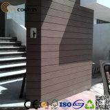 Wand der Qualitäts-WPC (TF-04E)