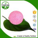 水溶性のFertilizer NPK 20-20-20+Te