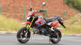 110cc Mini Moto Pocket Dirt Bike Kawasaki Racing Motorcycle (KSR)