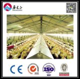 Corrugated Steel Sheet (BYCH-004)를 가진 가벼운 Steel Chicken House