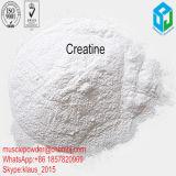 A aptidão de ocorrência do músculo do ácido aminado suplementa a creatina 57-00-1