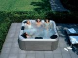 BALNEARIO al aire libre del masaje del torbellino del nuevo estilo de Monalisa (M-3390)