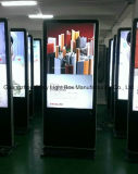 42 het duim Hoge Digitale LCD van de Definitie Scherm