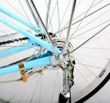 高品質の速い大人の電気自転車