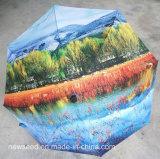 Parapluie Paraguas de bâton de marche de Wellpii