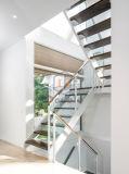 Branco de madeira personalizado da escadaria do passo dos trilhos de vidro