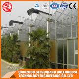 중국 다중 경간 식물성 꽃 강철 프레임 PC 장 녹색 집