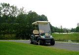48V 4は2つのSeaterのみょうばんシャーシの電気ゴルフ車を動かす