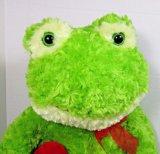 Het groene Stuk speelgoed van de Pluche van de Kikker met Hart