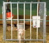 위원회 가축 담을 검술해 직류 전기를 통한 가축