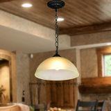 Дешевое сбывание привесного светильника света канделябра цены горячее с цепью