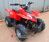 48V 500W 최대 대중적인 아이 전기 ATV 쿼드 자전거